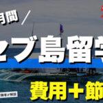 【体験談】セブ島留学1ヶ月にかかる費用+節約方法も解説!