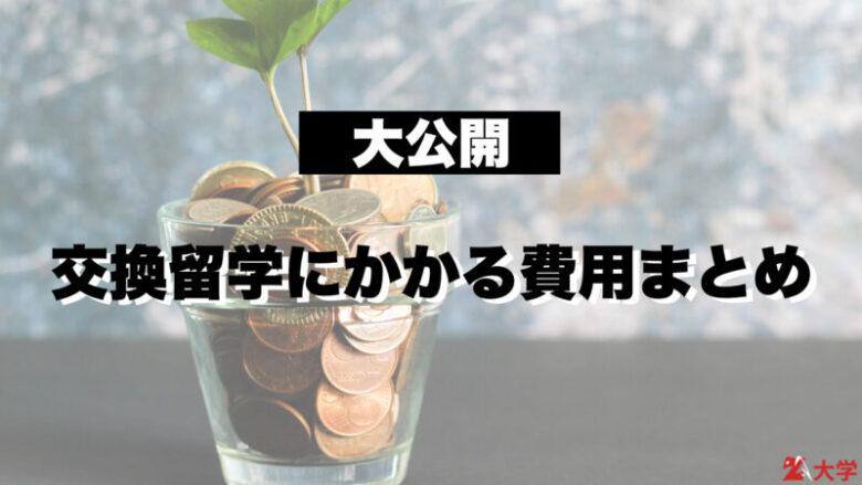 【大公開】交換留学にかかる費用まとめ